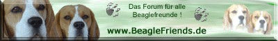 logo_beaglefriends
